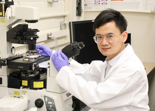 Xian Wang (MIE PhD candidate) has developed a magnetic nano-scale robot that can be moved anywhere inside a human cell. The tool could be used to study cancer and potentially enhance its diagnosis and treatment. Photo courtesy Tyler Irving.